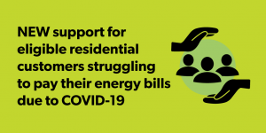 CEAP Energy Bill support program